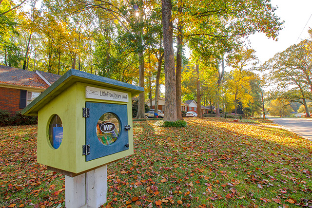 Little Free Library in Windsor Park